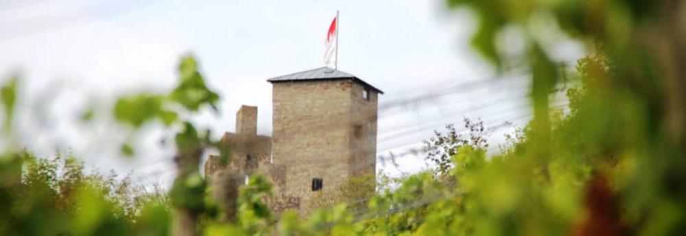 Frankens-Saalestück-Weinerlebnis